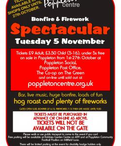 Bonfire and Firework Spectacular